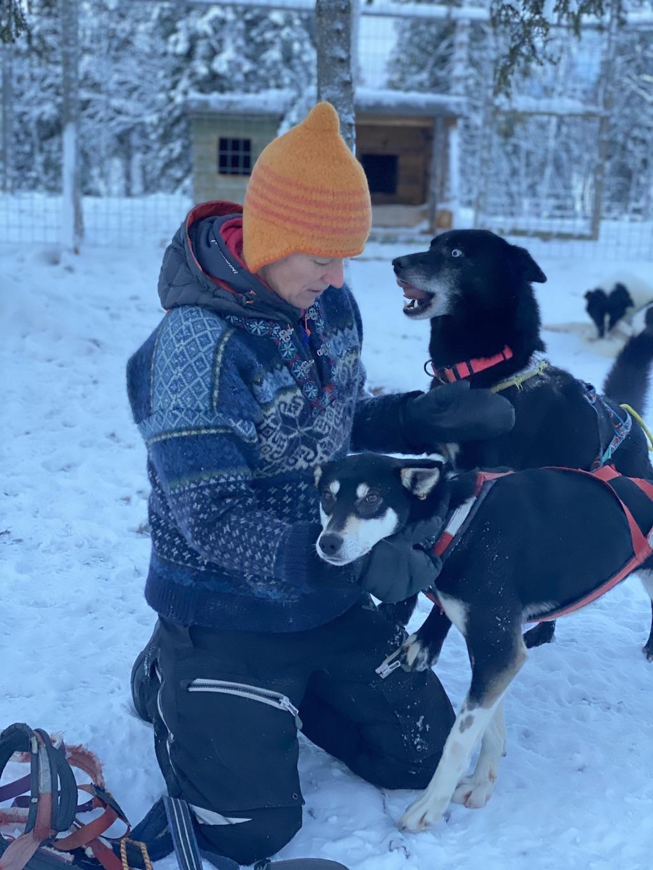 is dog sledding cruel