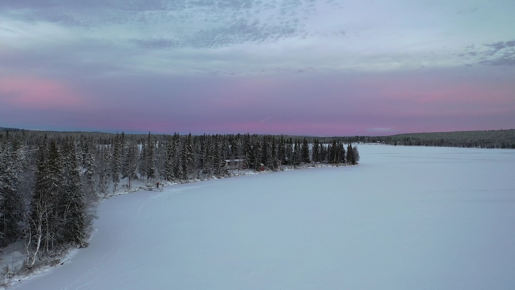 Living in polar darkness